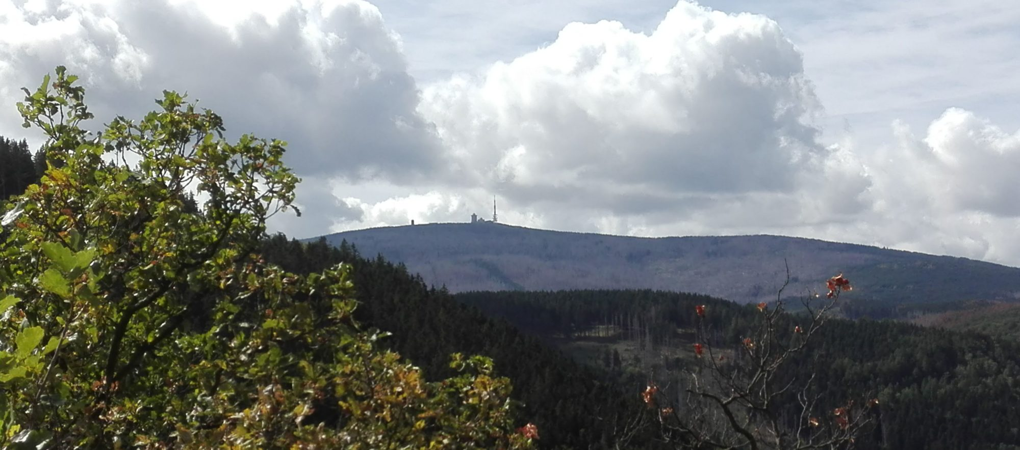 Chorkreis Nordost-Harz